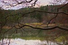Taferlklaus-See