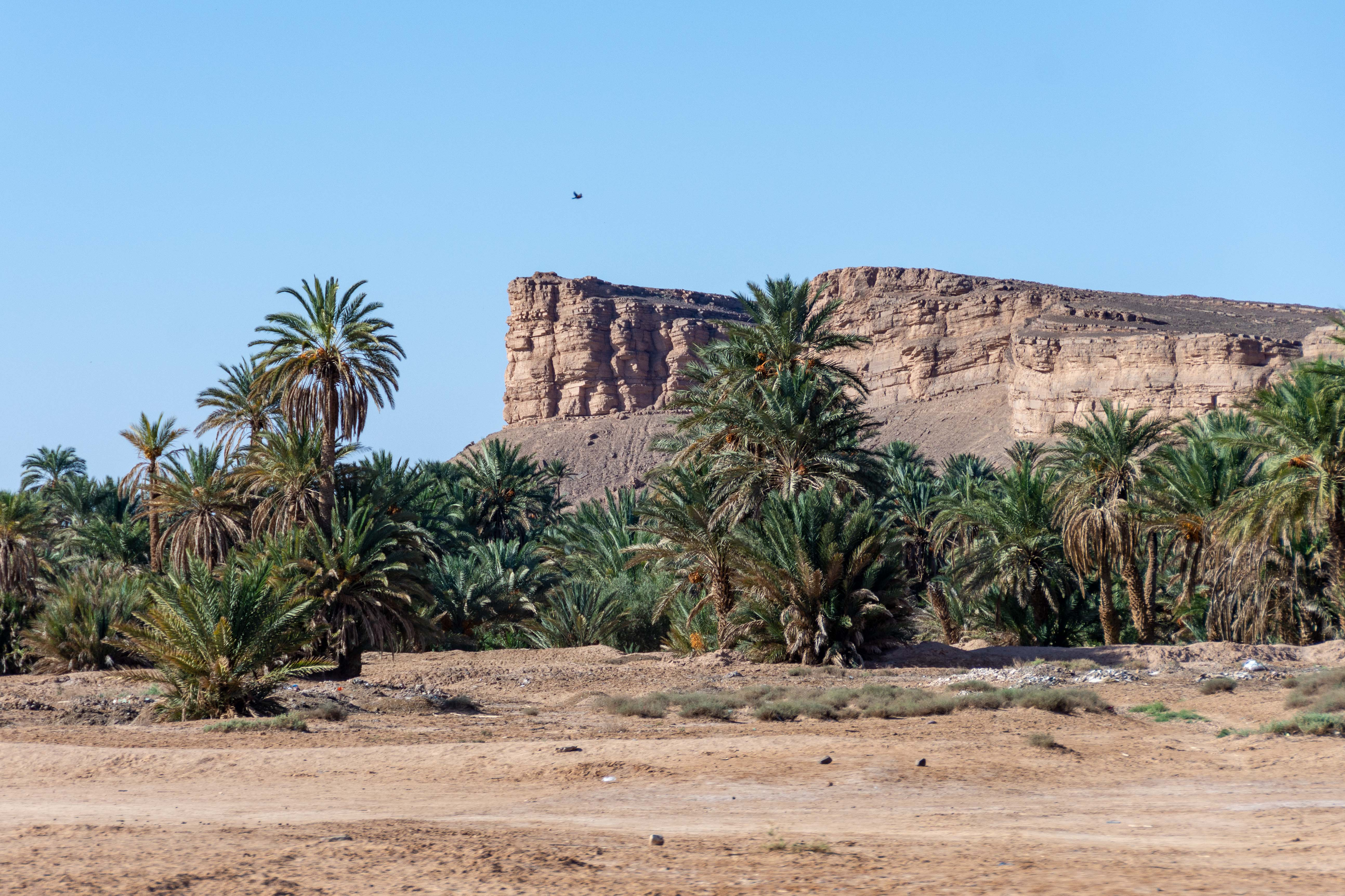 20181005_Marokko_114