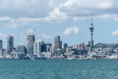 20190208_Neuseeland_8796