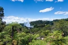 20190210_Neuseeland_Mike_033