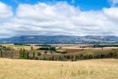 20190216_Neuseeland_Mike_060