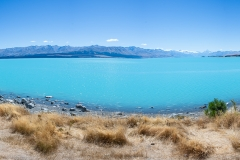 20190216_Neuseeland_Mike_061
