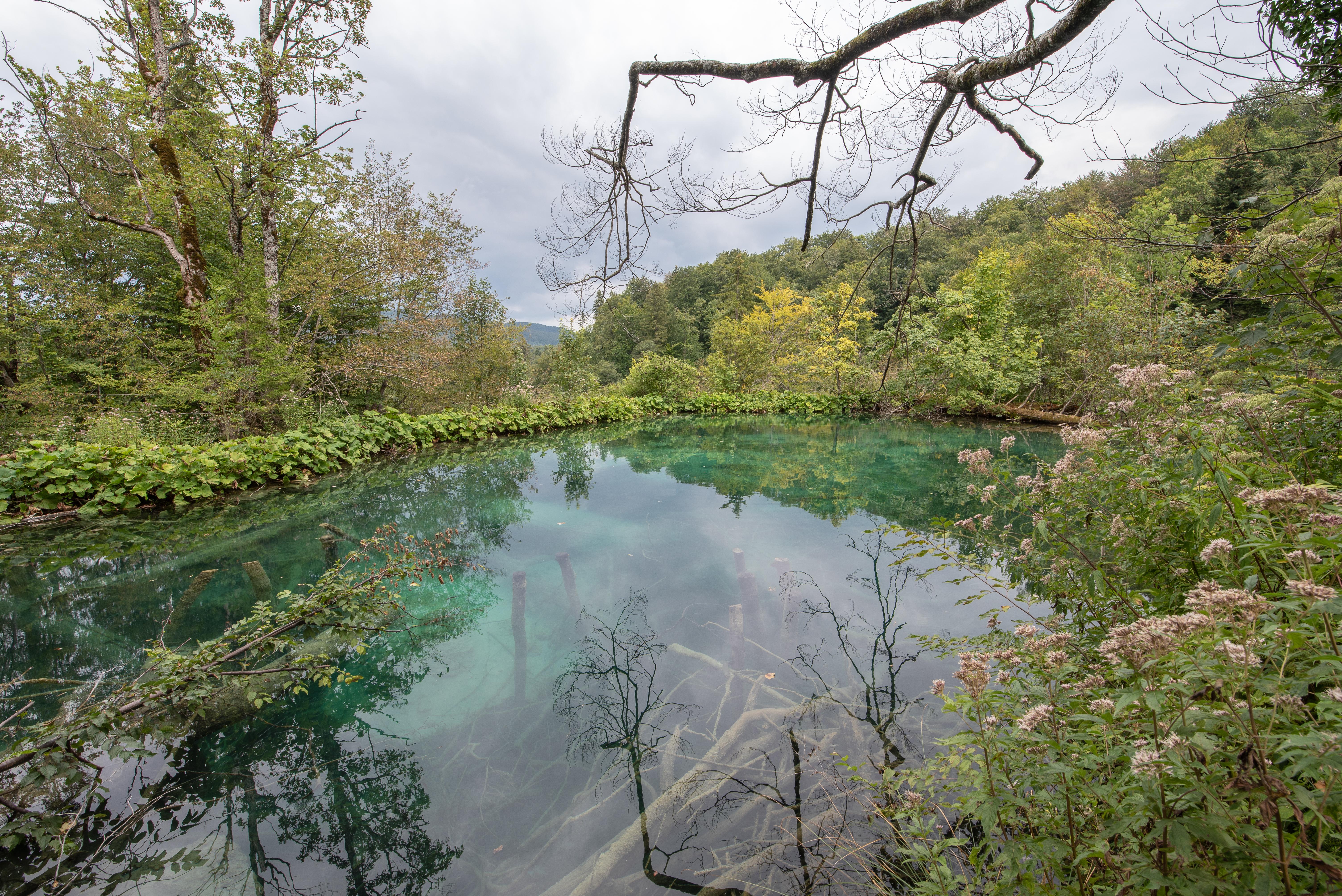 20180815_Plitvicer_Seen (672