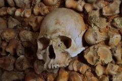 Bones-Chapel-Faro-2