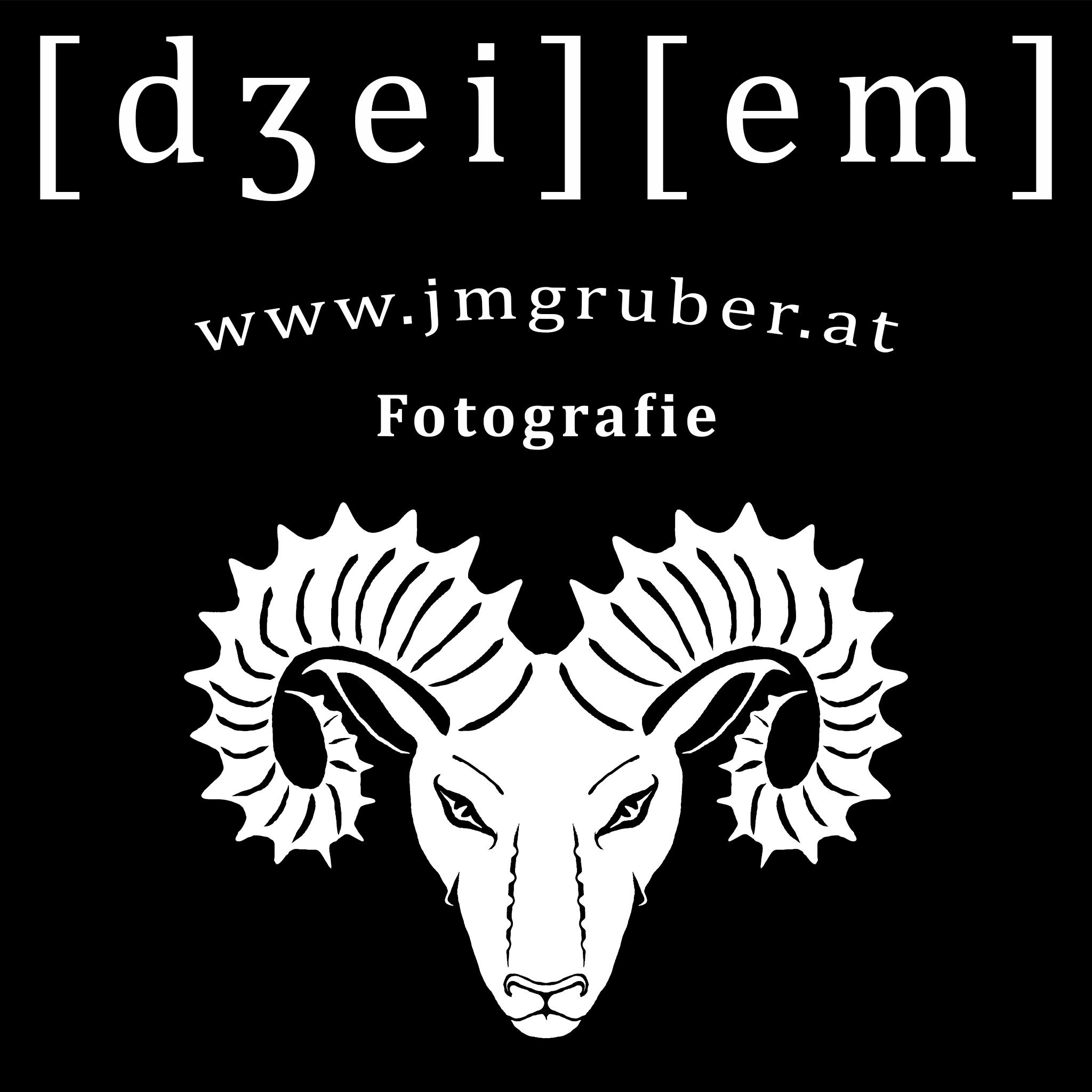 Schruber Logo_Webseite